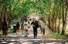 澳洲留学费用 最新塔斯马尼亚大学研究生学费参考