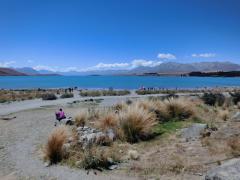 新西兰留学申请条件:2018年英国留学如何办理新西兰旅游签证(多图