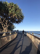 2018年新西兰留学硕士预科费用解析
