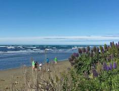 2018年高考成绩会影响到新西兰留学吗