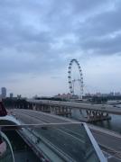 新加坡留学本科学费 新加坡留学怎么交学费