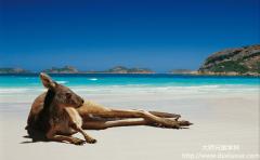 澳州留学的好处有哪些?