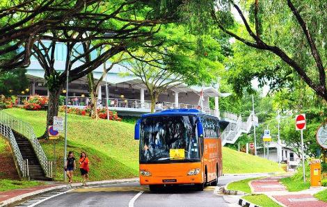 新加坡各类院校,新加坡留学优势,新加坡留学