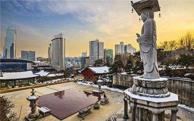 韩国留学,公共管理专业,管理专业