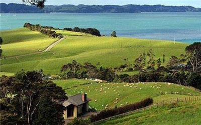 2018新西兰打工度假签证如何申请?