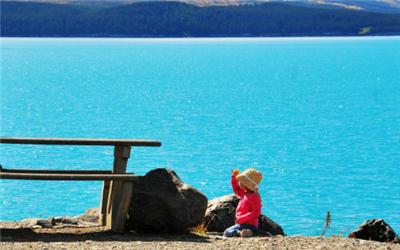 新西兰八大录取要求,新西兰留学,新西兰强势专业分析