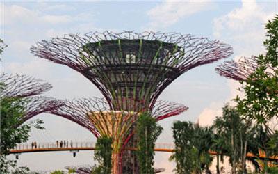 新加坡本科文凭回国认证流程, 新加坡留学, 新加坡本科文凭