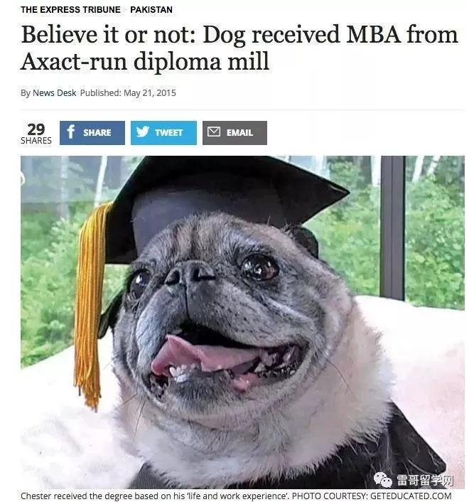 在英国一条狗都能拿到MBA文凭?留学申请如何避开野鸡大学