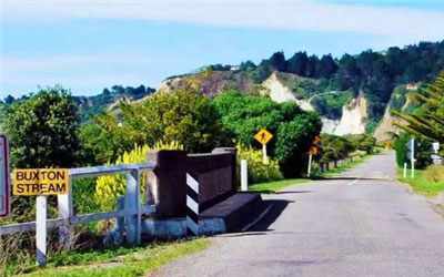 新西兰留学汇款,新西兰留学学费支付方式,新西兰留学