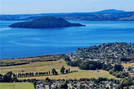 新西兰理工学院,新西兰院校,新西兰留学