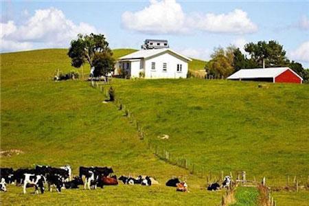 怀卡托大学,新西兰怀卡托大学,新西兰留学