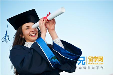 香港留学有哪些特色专业