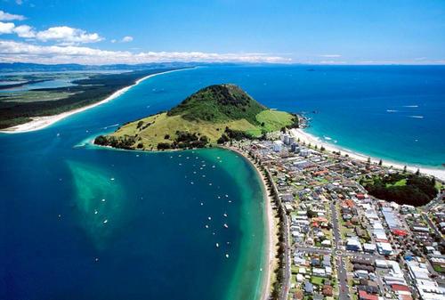 新西兰硕士留学条件及留学费用盘点