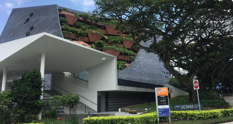 「新加坡留学」国内211学校申请新加坡国立大学难不难?