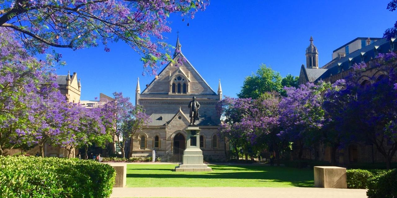 「新西兰留学」2021年新西兰留学专升硕费用需要多少?