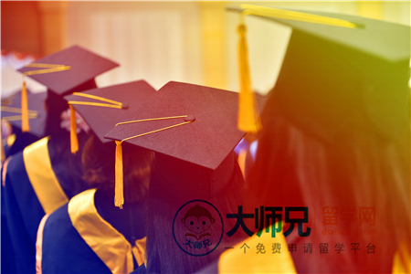 2020美国化学专业大学排名