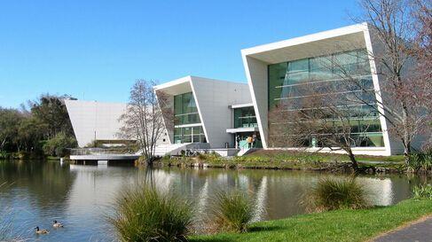 「新西兰留学」高考后留学新西兰公立大学学费需要多少?