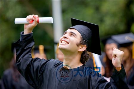 2020美国读大学哪些专业好
