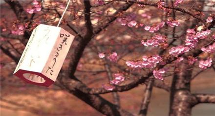 2020日本留学语言要求介绍